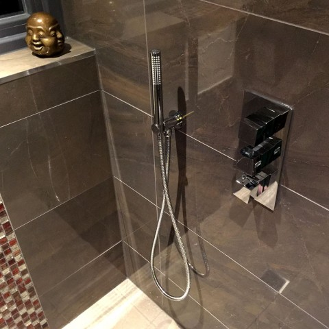 Luxury Shower Room